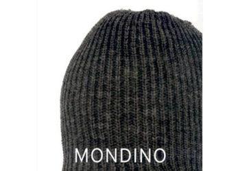 LenseMondino.jpg