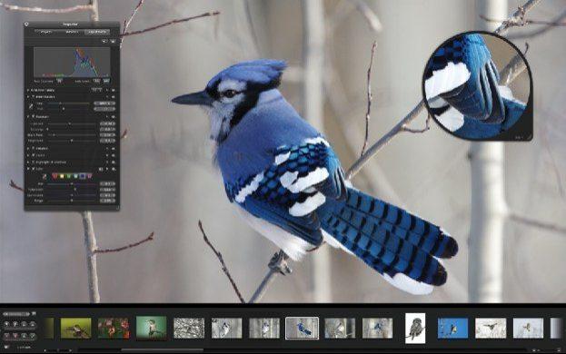 aperture21-20080212-152909