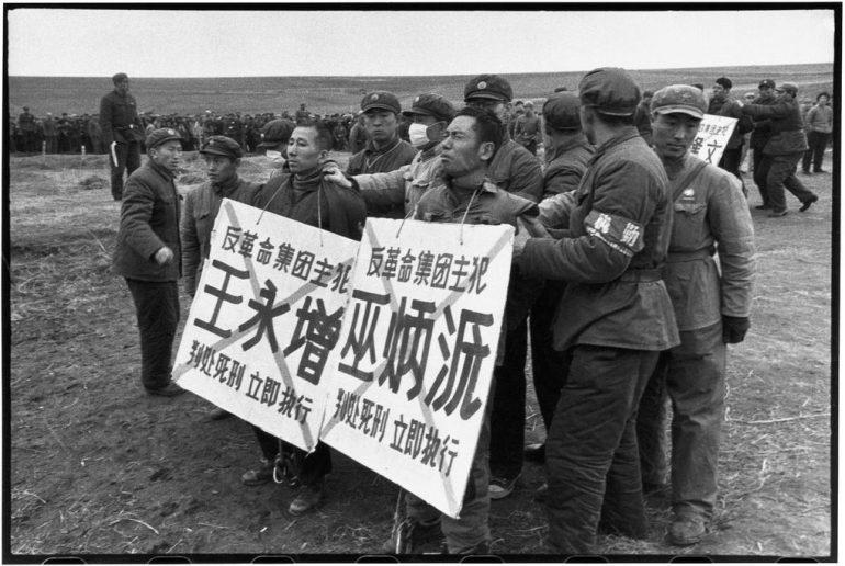 li-zhensheng-5.jpg
