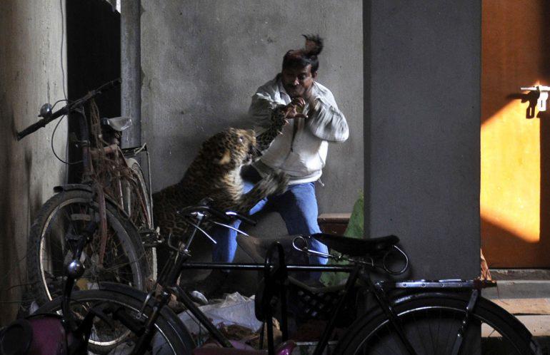 AFP-Getty-Images.jpg