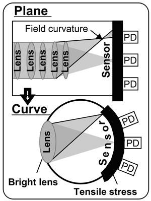 curvediagramhalfcolumn-1402453918753.jpg