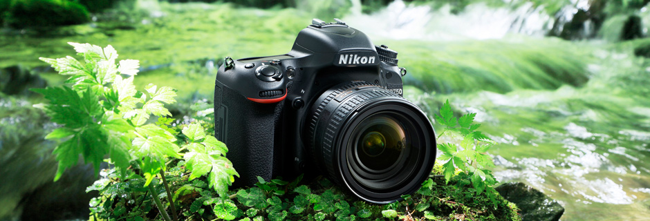 Image illustrative de l'article Nikon D750 : digne successeur du D700 ?