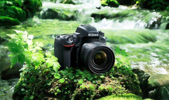 Nikon-D750-019-600x4001.jpg