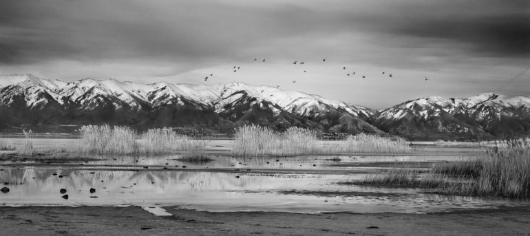 Antelope+Island+2014+Utah+©+Jakob+de+Boer.jpg