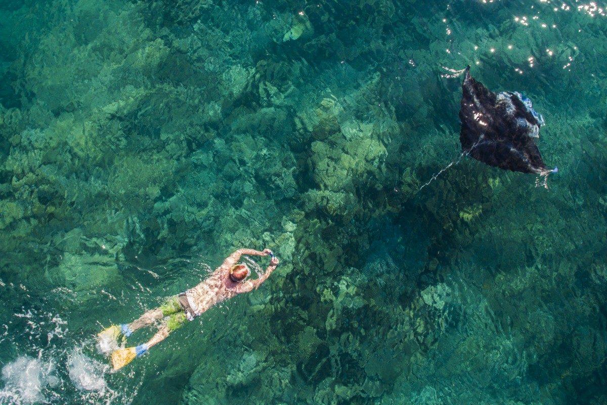 A snorkeller follows a Manta Ray, Yasawa Islands, Fiji - © Captain Salty