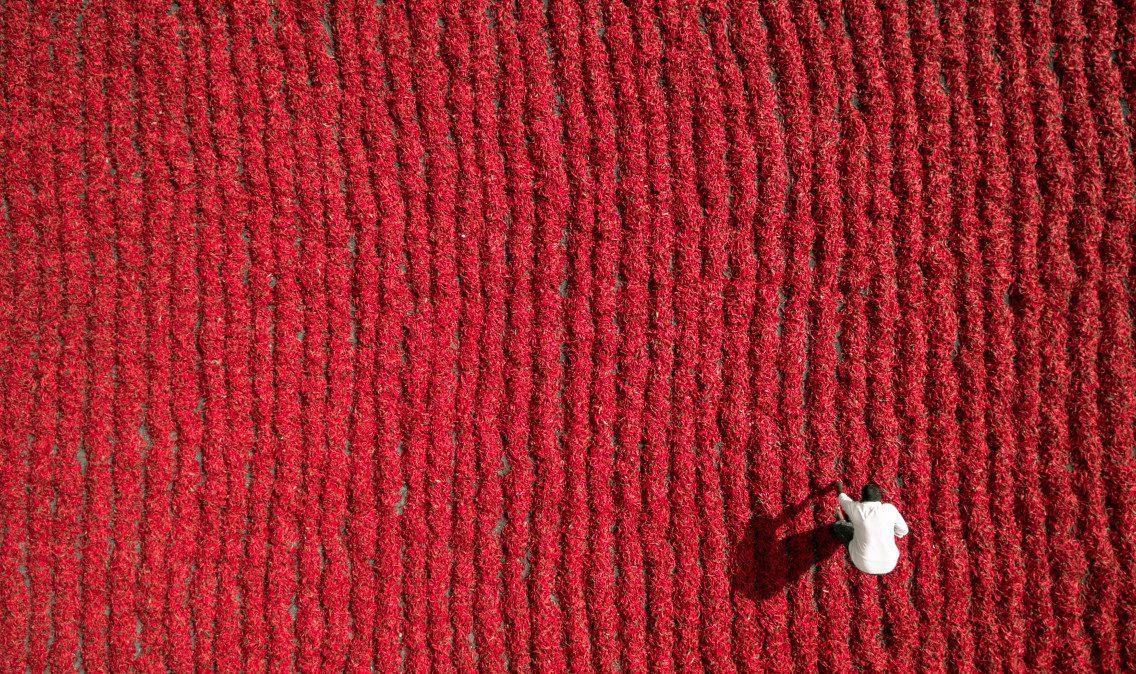 Red Chili Farmer, Guntur, India - © Aurobird