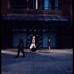 Shadows Journey © Robin Cassiau