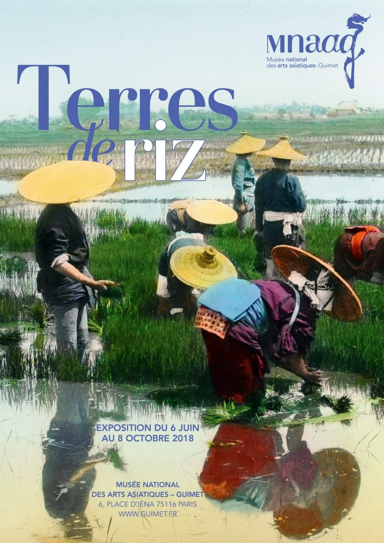 Terres_de_riz_12