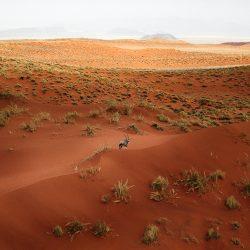Namibia-20161015-CF001978-0108