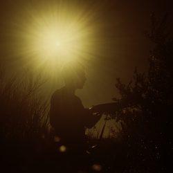 © LANIER Marine - Le soleil des loups - 1
