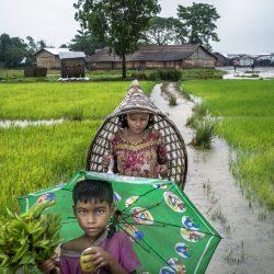 © Bruno Amsellem_Divergence_Rohingyas, une minorité sans voix (3)