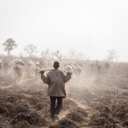 2-A proximité de Mango au Togo, 2016 ©Gilles Coulon courtesy galerie Sit Down_