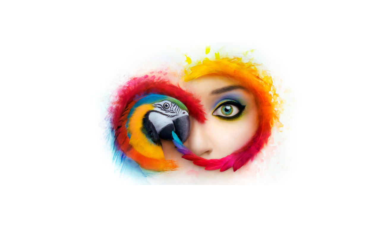 Adobe - Cover