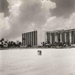 beach-x540q100