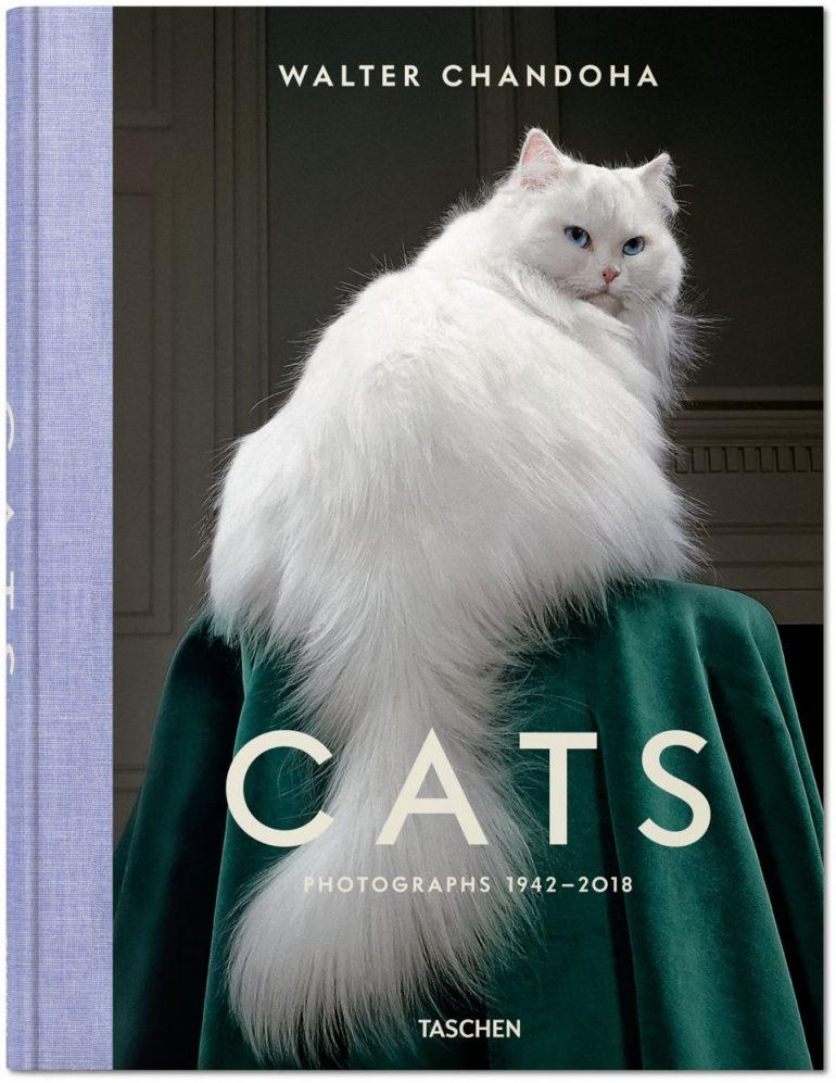 walter-chandoha-cats-photography-taschen-9