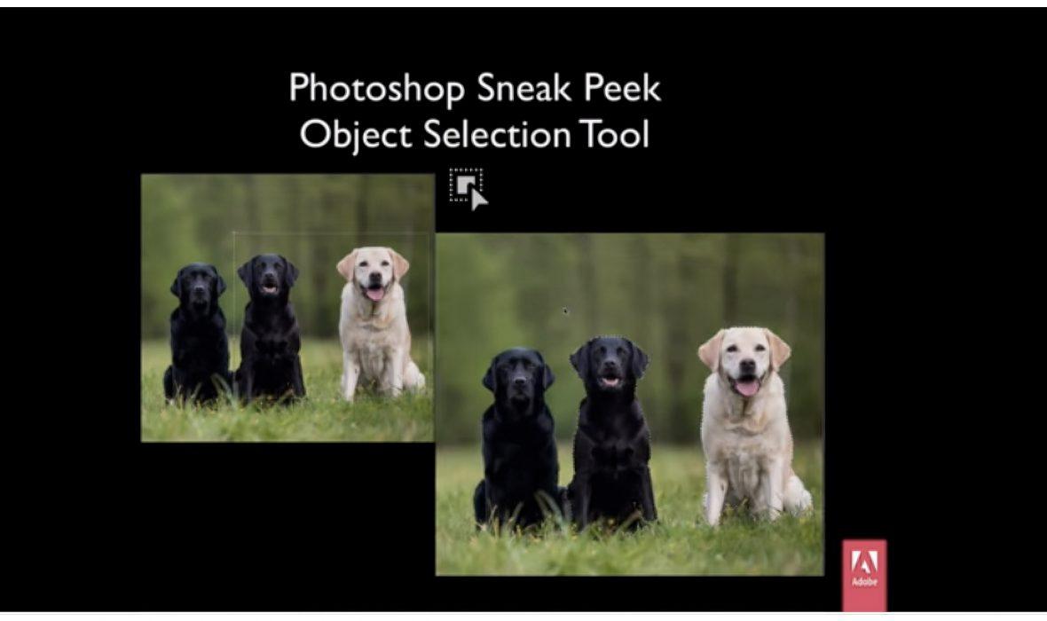 adobe-selection-objet-0