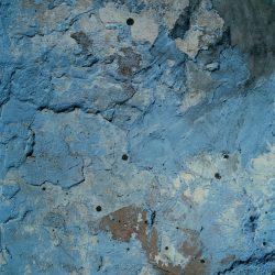 Harley-Weir-Paintings-4