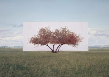 ignant-art-myoung-ho-lee-tree-2-720x450