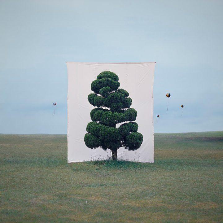 ignant-art-myoung-ho-lee-tree-3-720x720