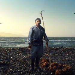 Récolteur d'Algues, Désert de Paracas