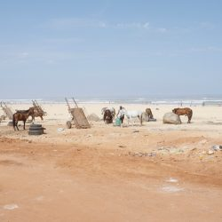 08_© Maïmouna Guerresi_Beyond the border - A journey to Touba