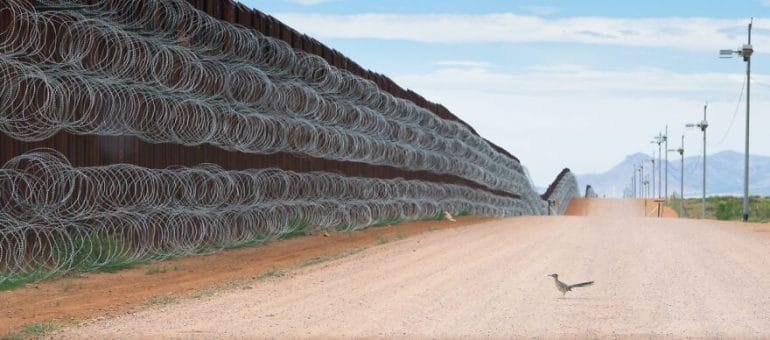 border-wall-project-by-alejandro-prieto