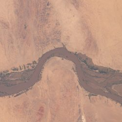 flooding-along-the-nile-in-sudan-nikon-d5-800mm-