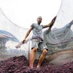 5.-Errazuriz-People-Victor-Pugatschew-Pressing-the-Pinot-Noir-Hi-Res-800x534