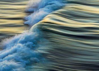 GDT-nature-wildlife-photography-awards-nature-studio-petapixel-800x533