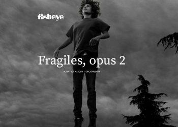 fisheye-fragile