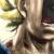 Illustration du profil de 1alicec373rm5