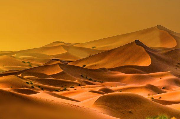 Safaris Photos au Maroc