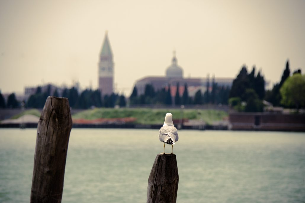 From Murano