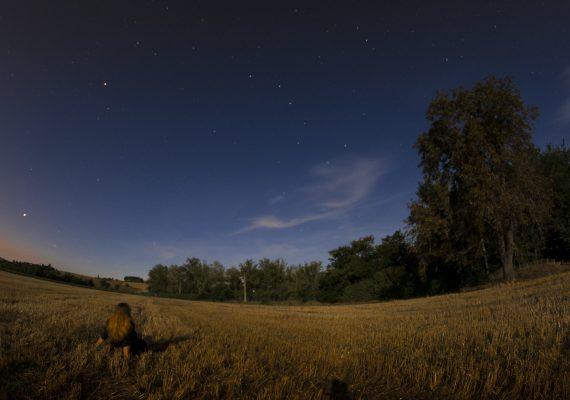6. Girl in the moonlight