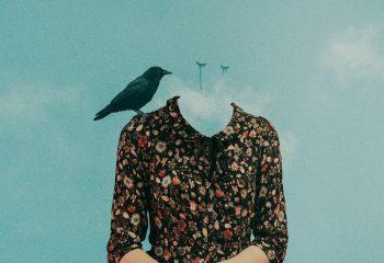 Les larmes des oiseaux.