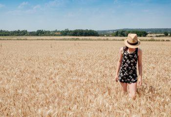 Au blé des champs