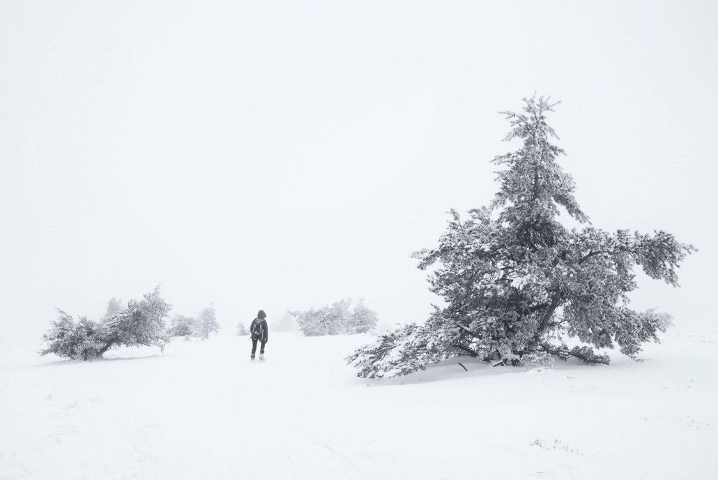 white hike