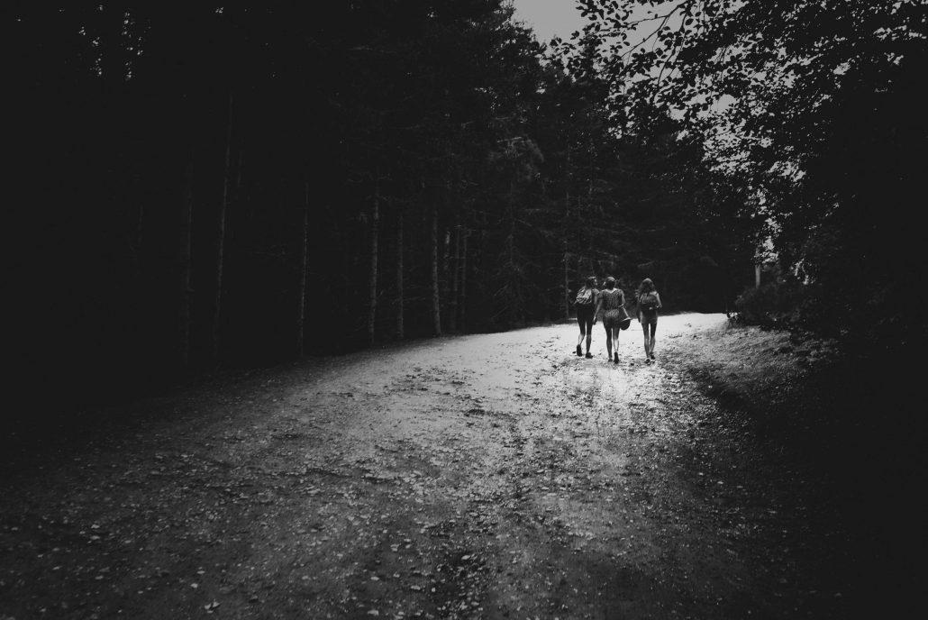 Promenons-nous, dans les bois…