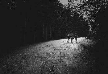 Promenons-nous, dans les bois...