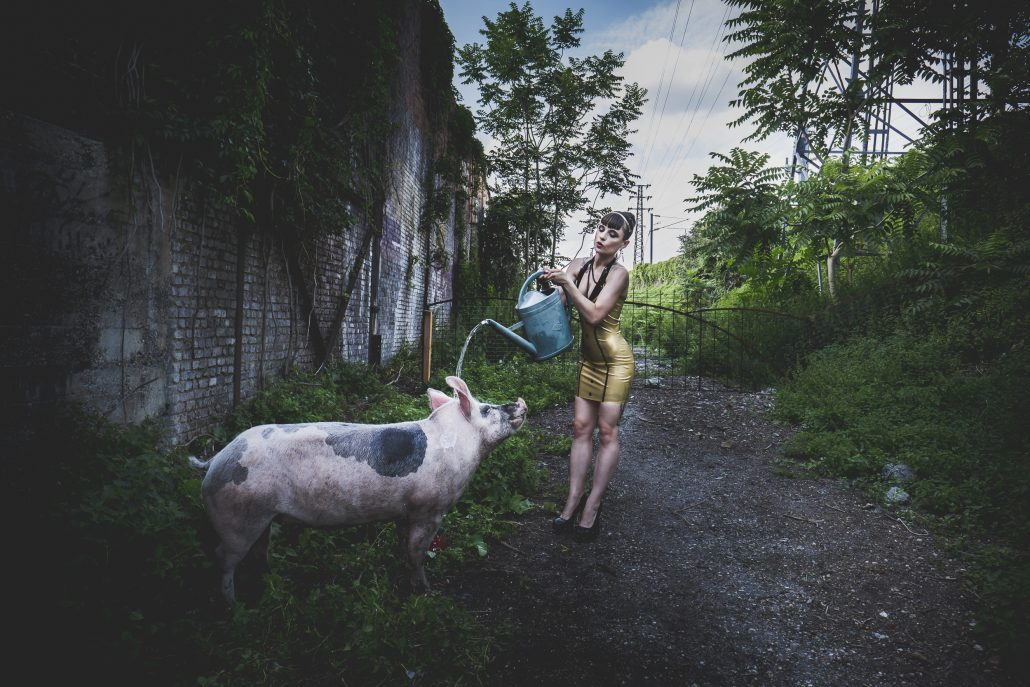 la douche du cochon