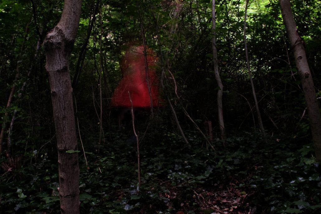 Bosques enganchados