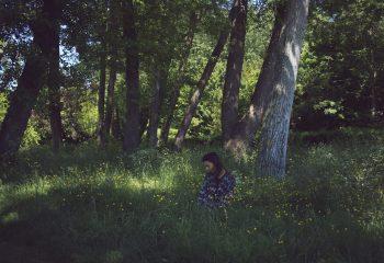 à l'orée des bois