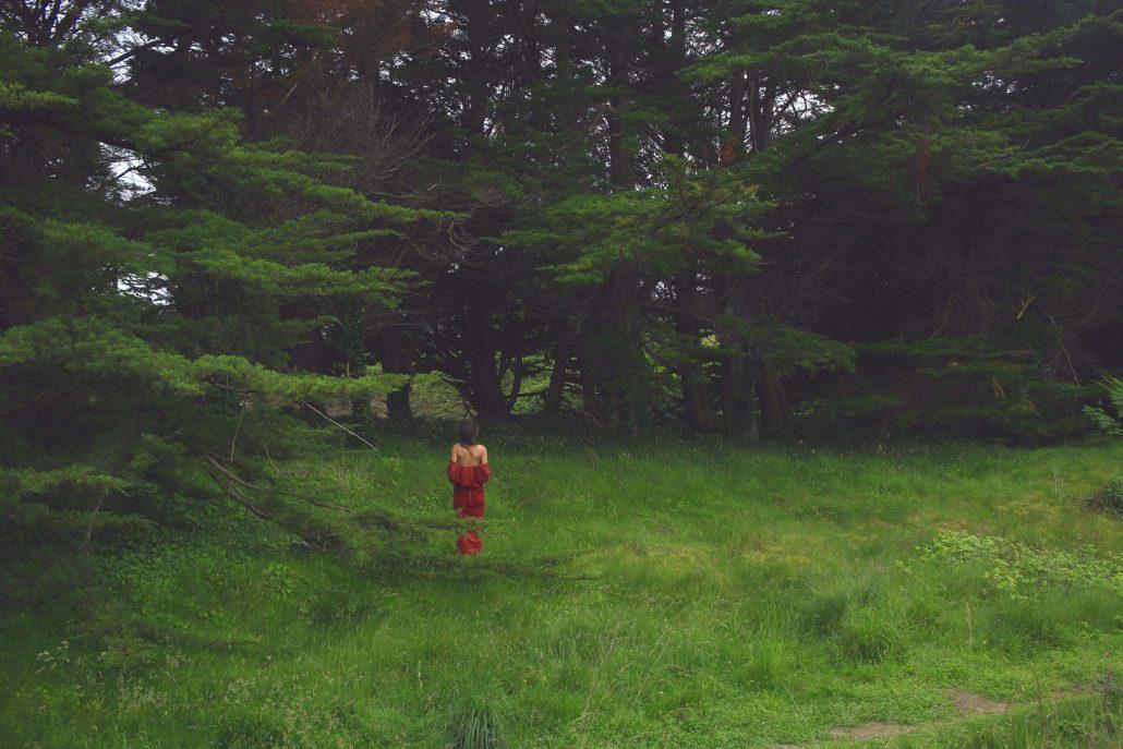 Au pied des pins