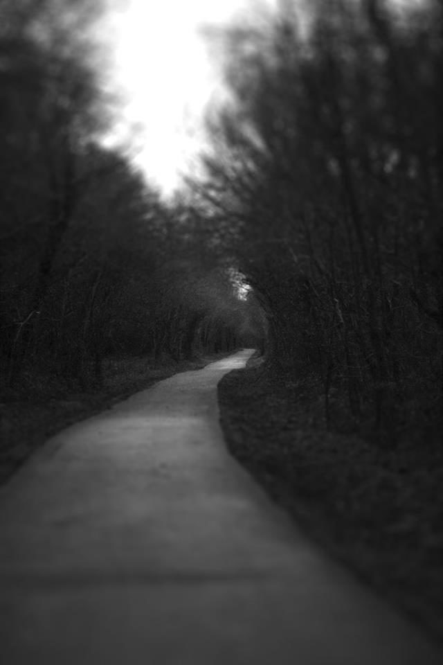 Chemin sombre.