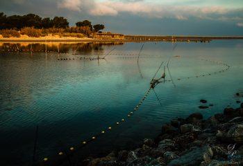 Un soir au bord de l'eau