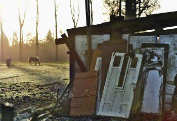 horse doors
