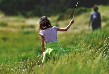 Balade en hautes herbes