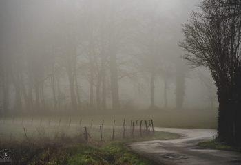 street mist .be