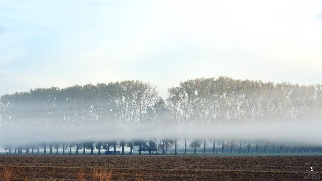 Horizon brumeux