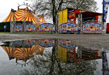 circus reflexion